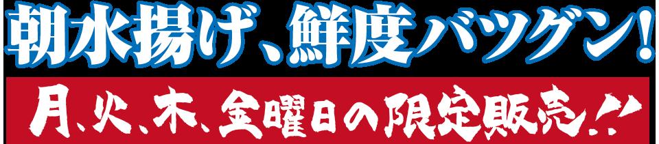 朝水揚げ・鮮度抜群! 月曜日、火曜日、木曜日、金曜日の限定販売!